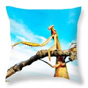 He Went That A Way Throw Pillow