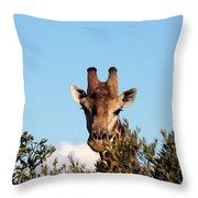 Head Above The Rest Throw Pillow