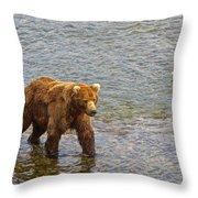 Head Grizzly Bear And Sea Gull In Moraine River In Katmai Np-ak  Throw Pillow
