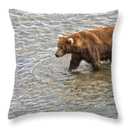 Head Grizzly Bear With Intense Fishing  Focus For Salmon In Moraine River In Katmai Np-ak Throw Pillow