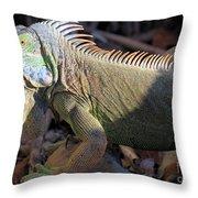 Head Light Throw Pillow