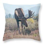 Head Lowered Bull Moose Throw Pillow