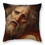 Head Of Laocoon Throw Pillow