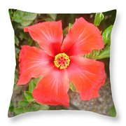 Head On Shot Of A Red Tropical Hibiscus Flower Throw Pillow
