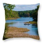 Head Springs Throw Pillow