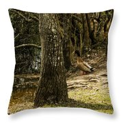 Headed For The River Throw Pillow
