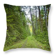 Heading Back Throw Pillow