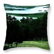 Headwaters Throw Pillow