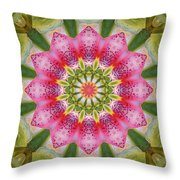 Healing Mandala 25 Throw Pillow by Bell And Todd