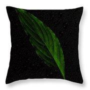 Healthy Green Throw Pillow