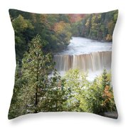 Hear The Roar Throw Pillow