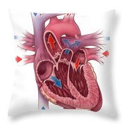 Heart Blood Flow Throw Pillow