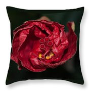 Heart Of A Hibiscus 2 Throw Pillow