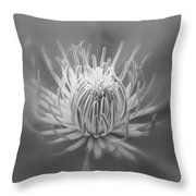 Heart Of A Red Clematis In Black And White Throw Pillow