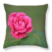 Heart Of My Heart Rose Throw Pillow