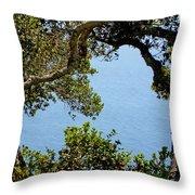 Heart Of Nepenthe - Big Sur Throw Pillow
