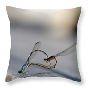 Heart Of The Damselfly Throw Pillow