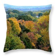 Heart Of The Ozarks Throw Pillow