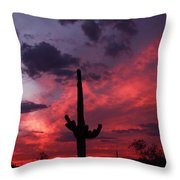 Heart Of The Sunset Throw Pillow