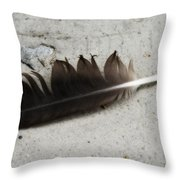 Heart Rock And Feather Throw Pillow