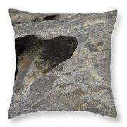 Heart Rock Throw Pillow