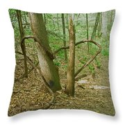 Heart Shaped Roots Throw Pillow