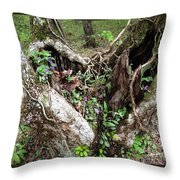 Heart-shaped Tree Throw Pillow