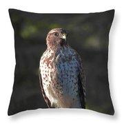 Heartful Hawk Throw Pillow