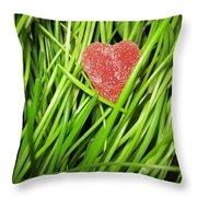 Hearty Throw Pillow