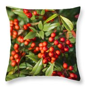 Heavenly Bamboo Red Berries Throw Pillow