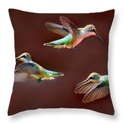 Heavenly Birds Throw Pillow