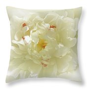 Heavenly Peony With Frame Throw Pillow