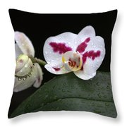 Heavenly Tranquility Throw Pillow