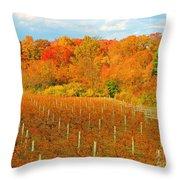 Heavenly Vineyard  Throw Pillow