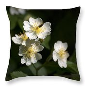 Heaven's Scent Throw Pillow