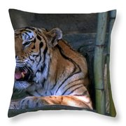 Heavy Breathing Throw Pillow