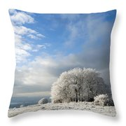Heavy Frost Throw Pillow by Anne Gilbert