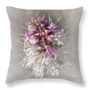 Hebe Throw Pillow