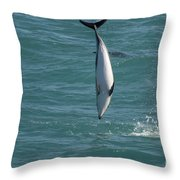 Hector Dolphin Diving Throw Pillow