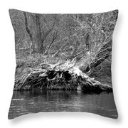 Hedge Witch Bw Throw Pillow