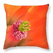 Hedgehog Cactus Flower Throw Pillow