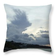 Hedgehog Cloud Throw Pillow