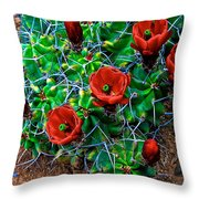 Hedgehog In Bloom Throw Pillow