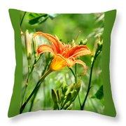 Heightened Awareness  Throw Pillow