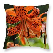 Heirloom Beauty Throw Pillow