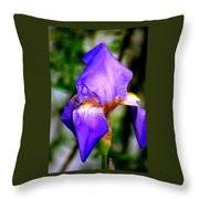 Heirloom Iris Purple Throw Pillow