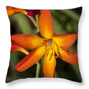 Helical Desecration Throw Pillow