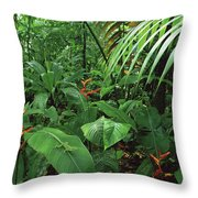 Heliconia And Palms With Green Anole Throw Pillow