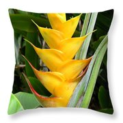 Heliconia Caribea Throw Pillow