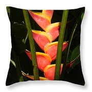 heliconia from Costa Rica 8 Throw Pillow